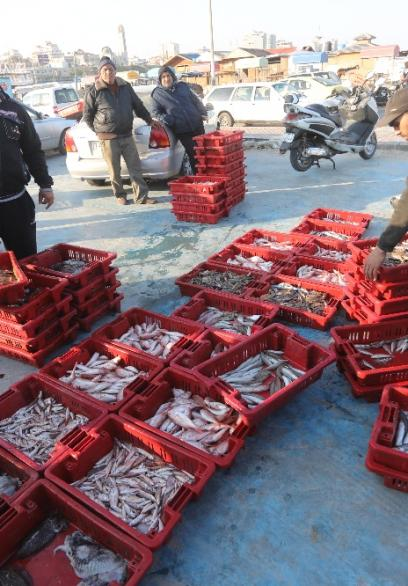 خيرات بحر غزة في حسبة الصيادين