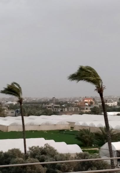 أجواء المنخفض في غزة