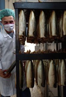 إعداد السمك المدخن الرنقا استعدادًا لموسمه في عيد الفطر