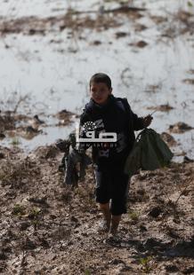 الاحتلال يتلف محاصيل زراعية بحوالي 1000 دونم شرقي غزة