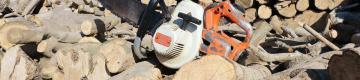 الحطابون.. مهنة موسمية للبسطاء بغزة