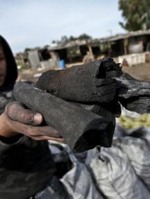 صناعة الفحم في غزة