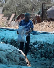 دباغة الجلود بغزة تنشط بعد نحر الأضاحي