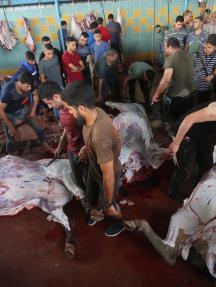 نحر الأضاحي بغزة