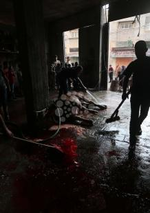 نحر الأضاحي في غزة