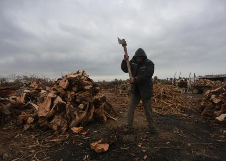 حطاب يمارس عمله بأجواء الشتاء في غزة