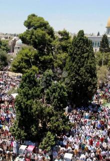 300 ألف مصلٍ بالأقصى رغم قيود الاحتلال