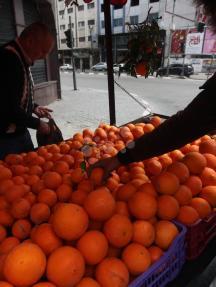 شاب يعرض البرتقال على عربته في غزة