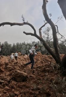 تضرر أراض زراعية بقصف إسرائيلي بحي الزيتون شرق غزة