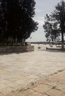 منع الصلاة بالمسجد الأقصى للوقاية من كورونا