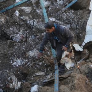 إسرائيل تقصف مزرعة دواجن بغزة