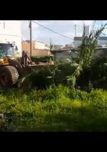 الاحتلال يجرّف ساحة منزل فلسطيني بيافا للمرة الـ3 | Safa.Ps