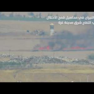 اشتعال الأراضي الزراعية  شرق مدينة غزة بفعل طائرة ورقية