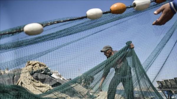 وكالة الصحافة الفلسطينية - العثور على جثمان صياد مصري ببحر غزة